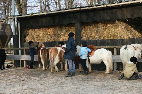 centre equestre 92 chatenay malabry