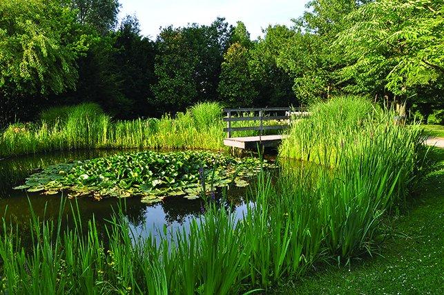 Parc des impressionnistes rueil malmaison 92 for Entretien jardin rueil malmaison