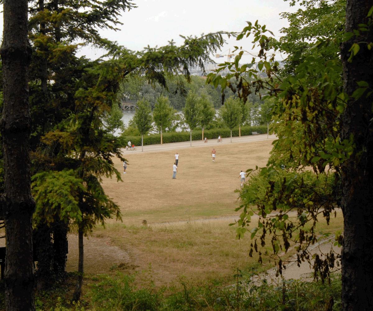 Promenade de colombes 92 au parc départemental pierre lagravère